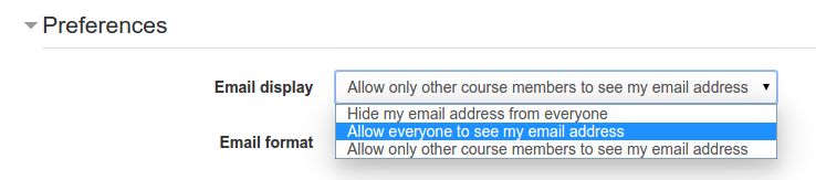 Allow everyone to see email.png